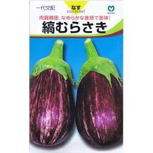 丸種 ナス 激安 縞むらさきなす 日本産 約9粒