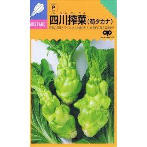 中原採種場 2020A/W新作送料無料 業界No.1 四川搾菜 約200粒