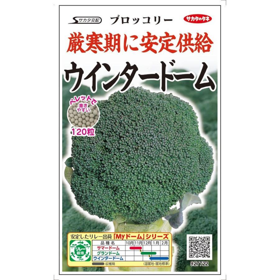 付与 サカタのタネ ブロッコリー ウインタード−ム ペレット種子約120粒 のタネ 2020新作