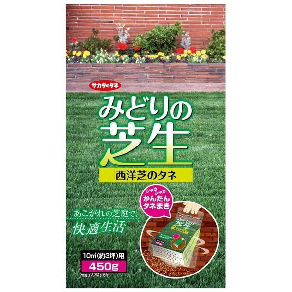 サカタのタネ 出荷 みどりの芝生 450g入 バースデー 記念日 ギフト 贈物 お勧め 通販