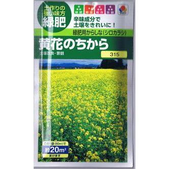 メーカー公式ショップ タキイ種苗 緑肥用 からしな 60ml 絶品 黄花のちから