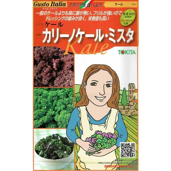 トキタ種苗 グストイタリア カリーノケールミスタ 約20粒×2種