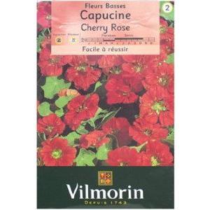Vilmorin社 ナスタチウム 高品質 引き出物 Cherry 金蓮花 Rose