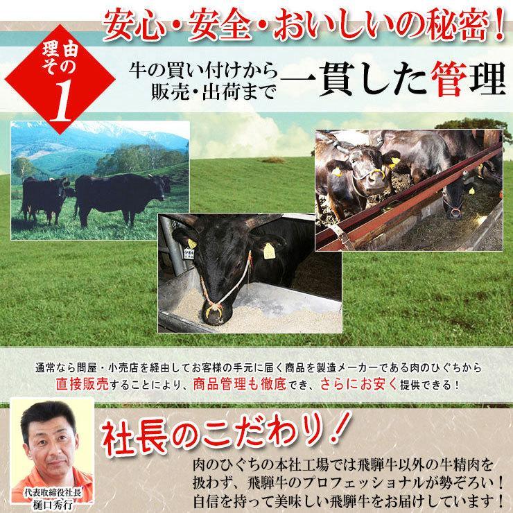 ギフト 肉 牛肉  和牛 飛騨牛 生ハンバーグ 120g×6個 送料無 御礼 内祝 御祝 プレゼント 肉のひぐち|nikunohiguchi-yafuu|13