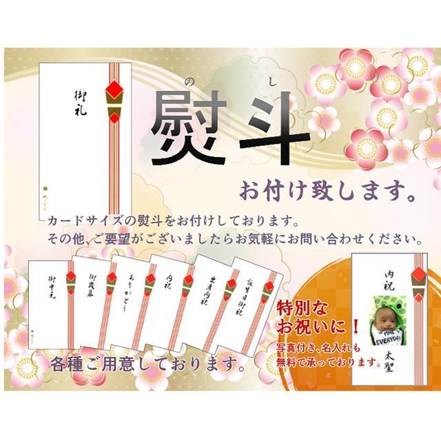 ギフト 肉 牛肉  和牛 飛騨牛 生ハンバーグ 120g×6個 送料無 御礼 内祝 御祝 プレゼント 肉のひぐち|nikunohiguchi-yafuu|18