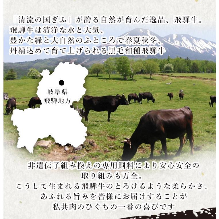 肉 ギフト A4A5 飛騨牛 牛肉 和牛 ステーキ サーロイン 165g位×3枚 化粧箱入 御礼 御祝 内祝 敬老の日|nikunohiguchi-yafuu|04