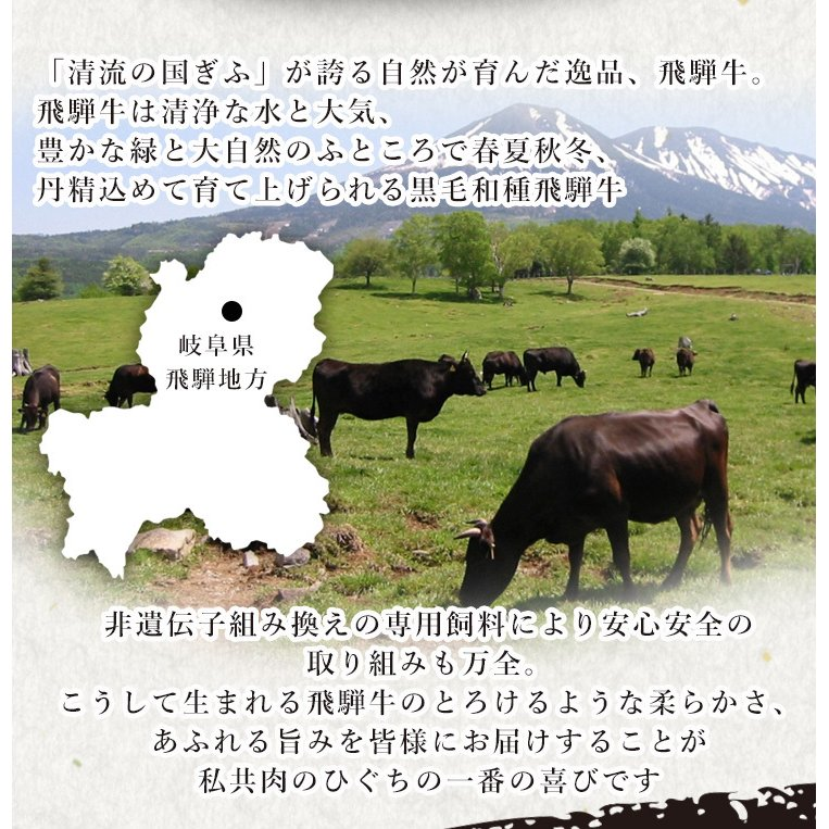 ギフト 肉 牛肉  和牛  すき焼き 和牛 飛騨牛 牛肩ロース クラシタ 350g 約2〜3人 化粧箱入 御祝 内祝 御礼 nikunohiguchi-yafuu 04