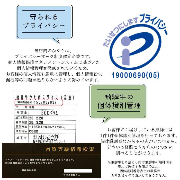 焼肉 肉 牛肉 福袋 バーベキューセット 飛騨牛 国産豚肉 1kg 約4〜5人 送料無 国産 和牛 バーベキュー BBQ お取り寄せ グルメ|nikunohiguchi-yafuu|18