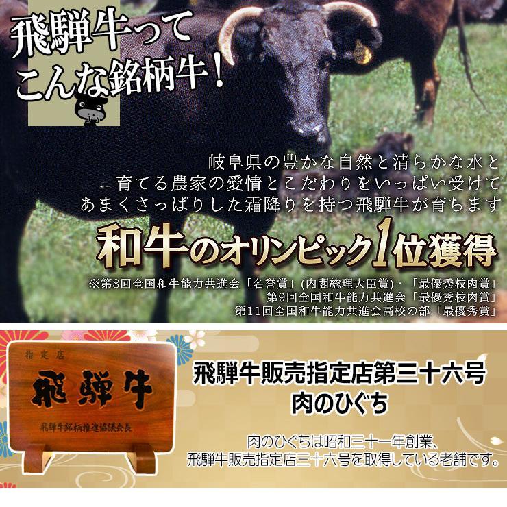 焼肉 肉 牛肉 福袋 バーベキューセット 飛騨牛 国産豚肉 1kg 約4〜5人 送料無 国産 和牛 バーベキュー BBQ お取り寄せ グルメ|nikunohiguchi-yafuu|19