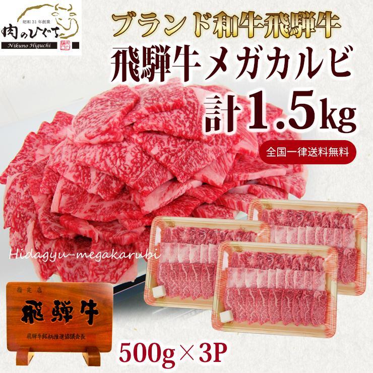 肉 牛肉 焼肉 セット 和牛 飛騨牛 メガ盛 カルビ 低廉 バーベキューセット 2020春夏新作 大容量 BBQ 1.5kg バーベキュー