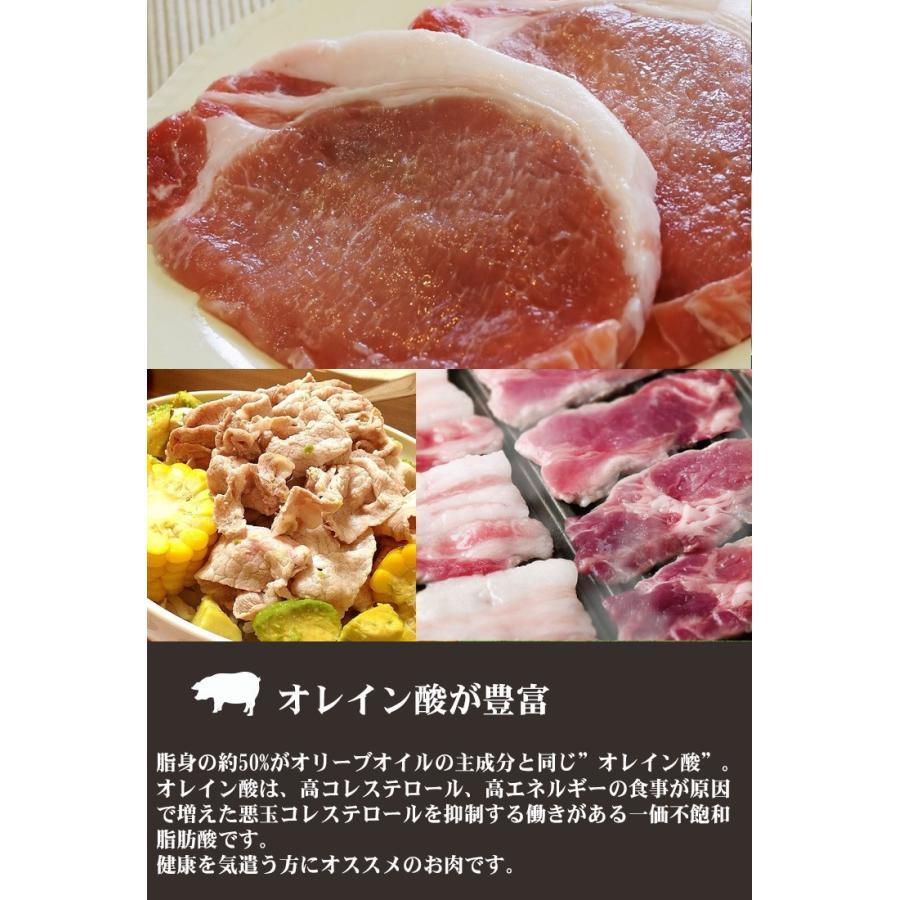 豚肉 ステーキ イベリコ豚 ロースステーキ 60g ブランド豚 お取り寄せ グルメ nikunohiguchi-yafuu 06
