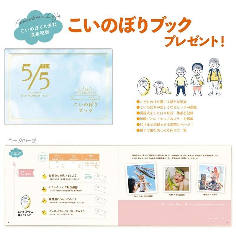[徳永][鯉のぼり]庭園用[ポール別売り]大型鯉[8m鯉3匹][大翔][千羽鶴吹流し][北海道・沖縄・離島を除き送料無料]