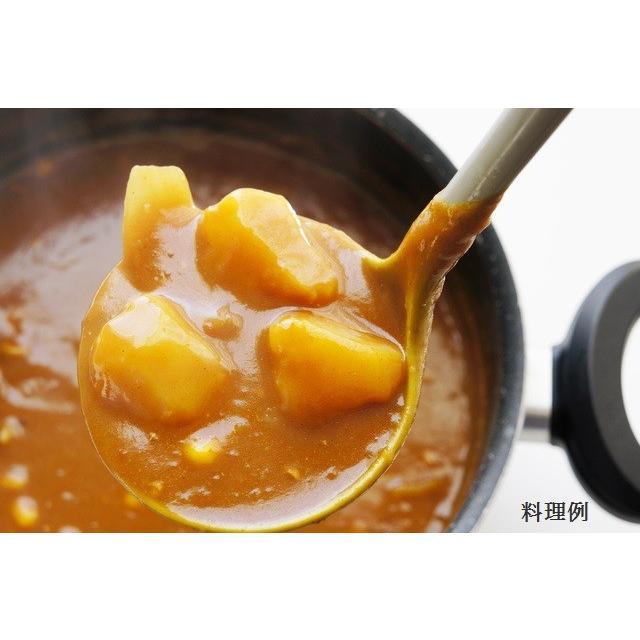 有機野菜を使用したポタージュ(100g×3種 合計15袋) 無添加 無脂肪 日本スープ nippon-soup 05