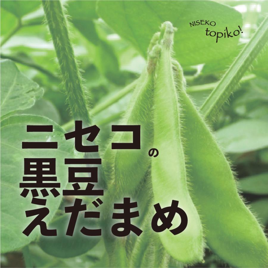 お気に入り いよいよ9月4日まで 北海道ニセコ産 枝つき枝豆 お気にいる 送料込