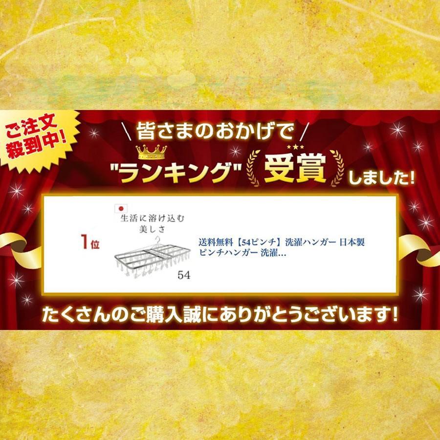 洗濯ハンガー ピンチハンガー 物干しハンガー  54ピンチ  日本製  洗濯ばさみ|nishida|02