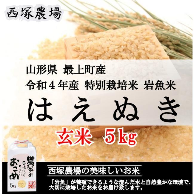 【新米】特別栽培米はえぬき岩魚米 (令和3年産)玄米 5kg nishiduka-farm