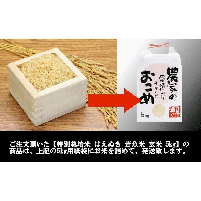 【新米】特別栽培米はえぬき岩魚米 (令和3年産)玄米 5kg nishiduka-farm 08