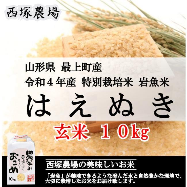 特別栽培米はえぬき岩魚米 (令和2年産)玄米 10kg nishiduka-farm