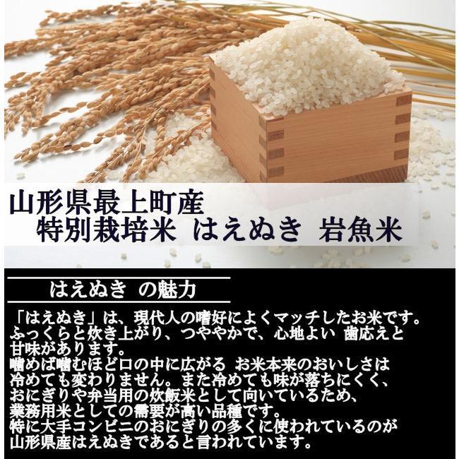 特別栽培米はえぬき岩魚米 (令和2年産)玄米 10kg nishiduka-farm 03