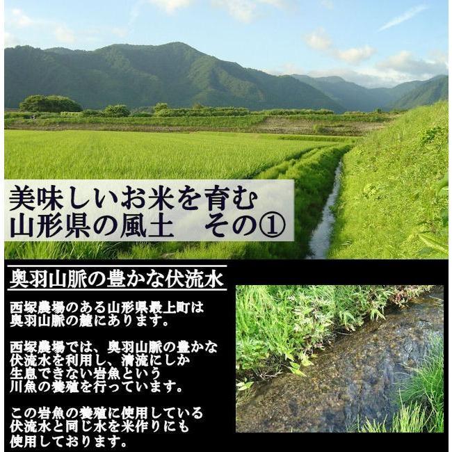 特別栽培米はえぬき岩魚米 (令和2年産)玄米 10kg nishiduka-farm 04