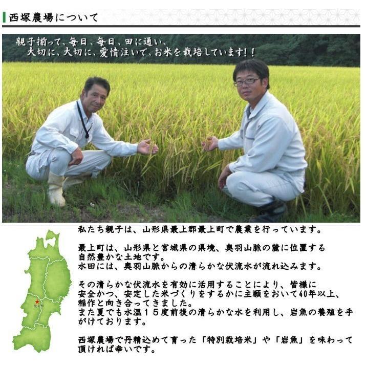 特別栽培米はえぬき岩魚米 (令和2年産)玄米 10kg nishiduka-farm 06