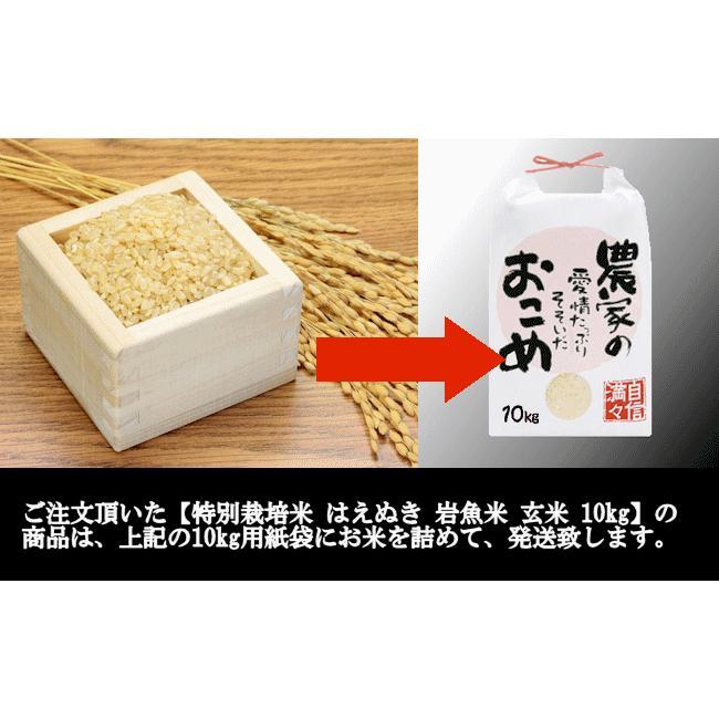 特別栽培米はえぬき岩魚米 (令和2年産)玄米 10kg nishiduka-farm 08