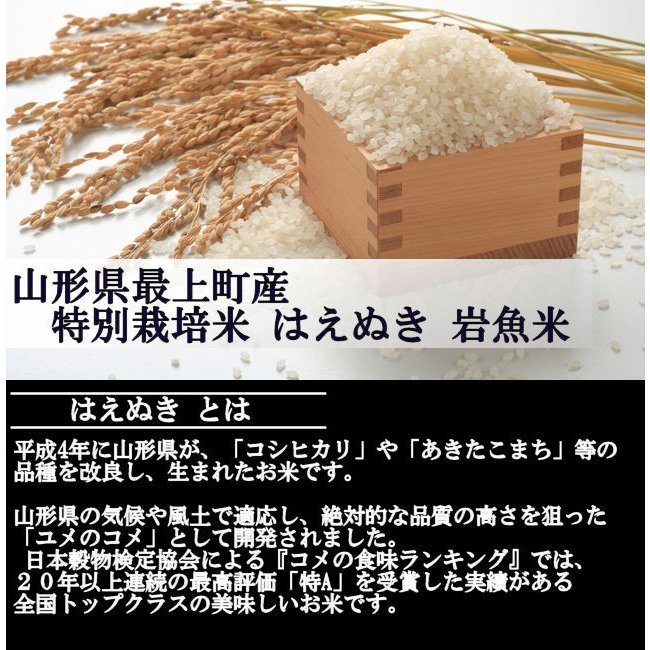 特別栽培米はえぬき岩魚米 (令和2年産)玄米 20kg|nishiduka-farm|02