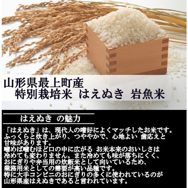 特別栽培米はえぬき岩魚米 (令和2年産)玄米 20kg|nishiduka-farm|03