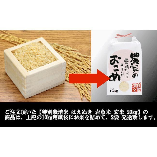 特別栽培米はえぬき岩魚米 (令和2年産)玄米 20kg|nishiduka-farm|08