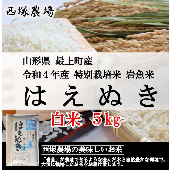【新米】特別栽培米はえぬき岩魚米 (令和3年産)白米 5kg|nishiduka-farm