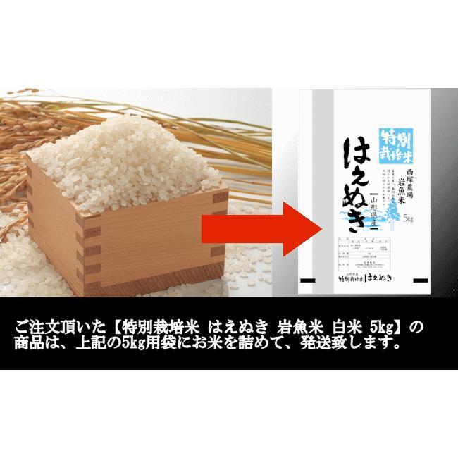 【新米】特別栽培米はえぬき岩魚米 (令和3年産)白米 5kg|nishiduka-farm|08