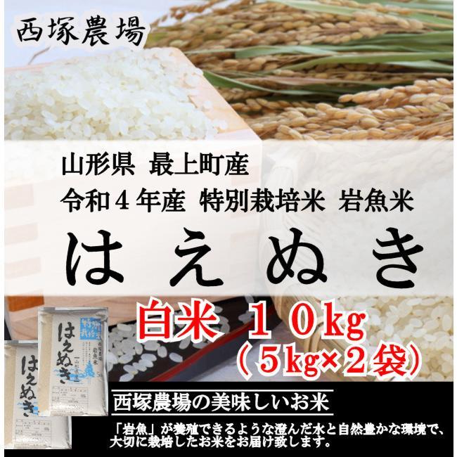 特別栽培米はえぬき岩魚米 (令和2年産)白米 10kg|nishiduka-farm