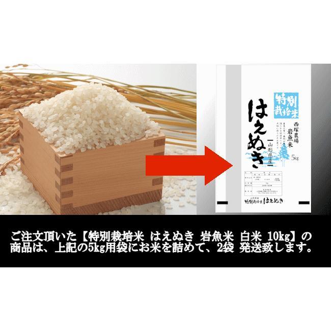 特別栽培米はえぬき岩魚米 (令和2年産)白米 10kg|nishiduka-farm|08