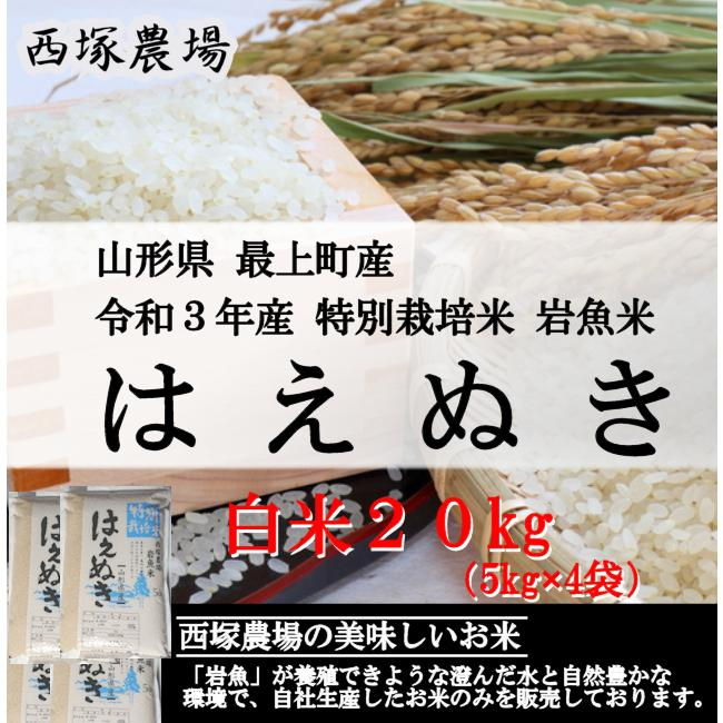 特別栽培米はえぬき岩魚米 (令和2年産)白米 20kg|nishiduka-farm