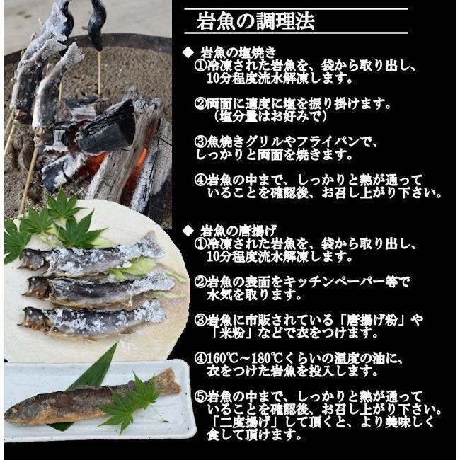 岩魚 50匹 nishiduka-farm 05