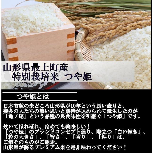 特選セレクト (令和2年産)白米 合計20kg|nishiduka-farm|03