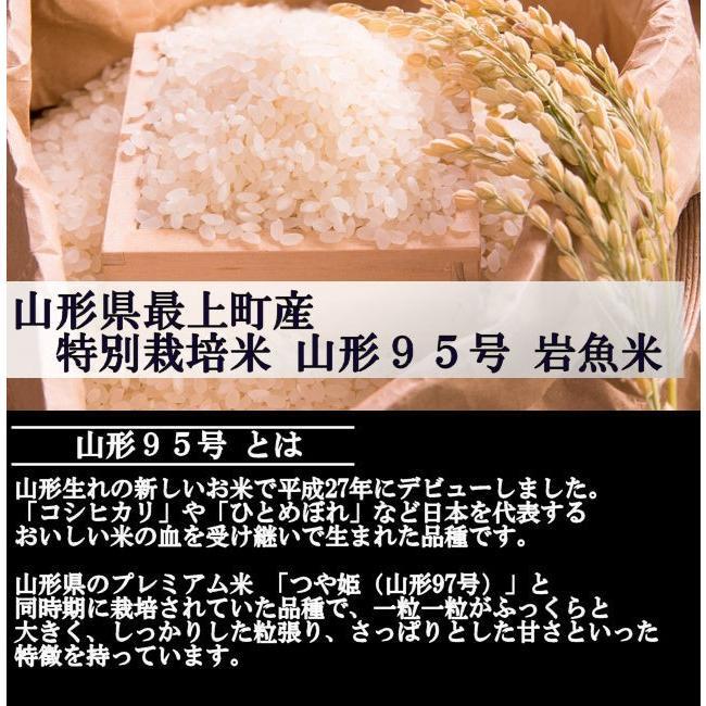 特選セレクト (令和2年産)白米 合計20kg|nishiduka-farm|06