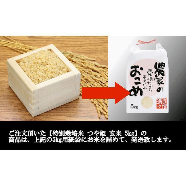 【新米】特別栽培米つや姫 (令和3年産)玄米 5kg|nishiduka-farm|09