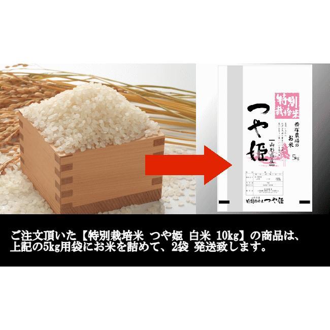 【新米】特別栽培米つや姫 (令和3年産)白米 10kg nishiduka-farm 09