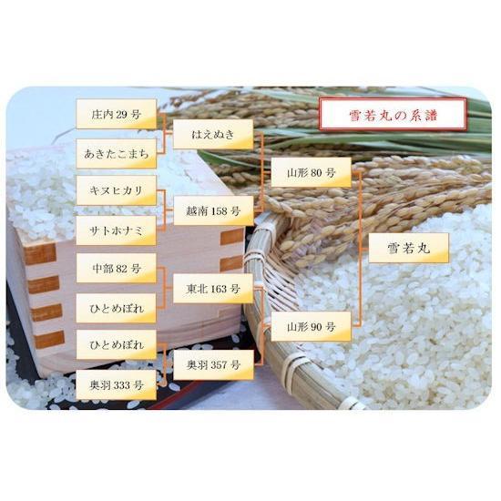 【新米】雪若丸 (令和3年産)玄米 5kg nishiduka-farm 05