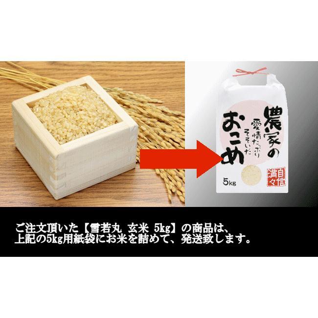 【新米】雪若丸 (令和3年産)玄米 5kg nishiduka-farm 09