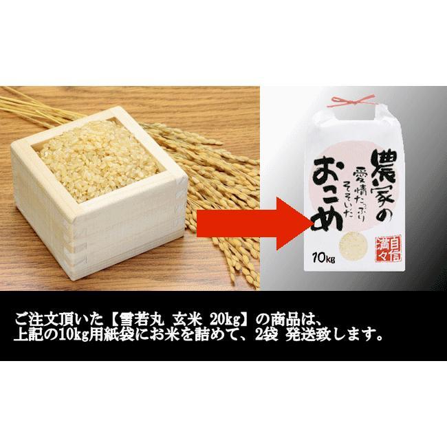 【新米】雪若丸 (令和3年産)玄米 20kg nishiduka-farm 09
