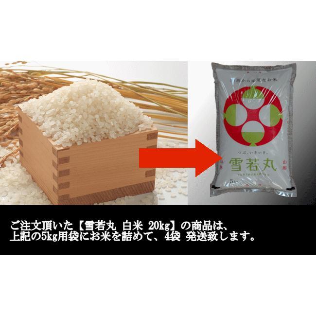 【新米】雪若丸 (令和3年産)白米 20kg nishiduka-farm 10