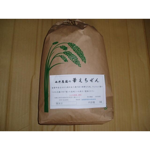 減農薬米 華越前 5キロ|nishii-organic