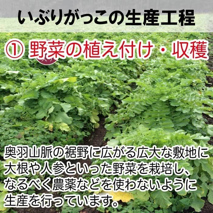 秋田食産 いぶりがっこ ハーフ 150g×2袋  倍々ストア 倍倍ストア ペイペイ ポイント消化 食品 得トク2weeks セール 2021 nishino-ya 07