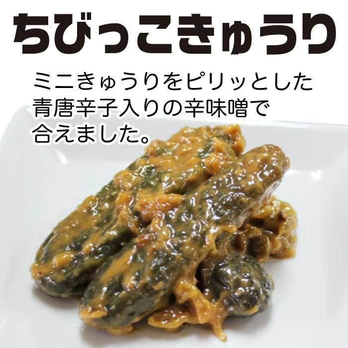 ちびっこきゅうり300g×2袋 野菜惣菜  倍々ストア 倍倍ストア ペイペイ ポイント消化 食品 得トク2weeks セール 2021|nishino-ya|04
