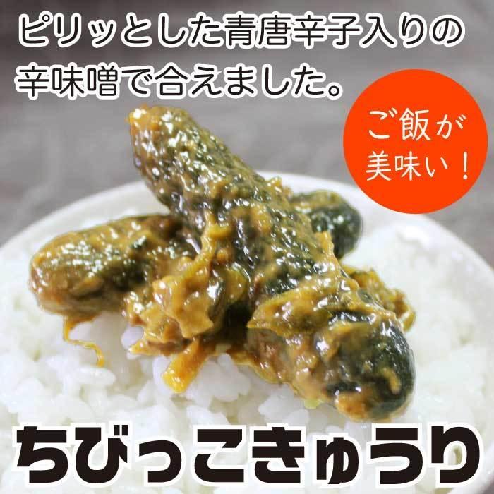 ちびっこきゅうり300g×2袋 野菜惣菜  倍々ストア 倍倍ストア ペイペイ ポイント消化 食品 得トク2weeks セール 2021|nishino-ya|09
