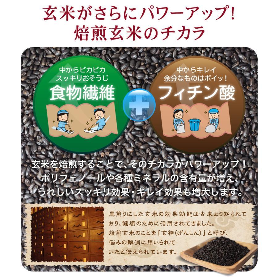 玄米珈琲(玄米コーヒー)パウダータイプ 100g 九州産 無農薬 有機JAS玄米100%使用 ノンカフェイン nishio-cha 05