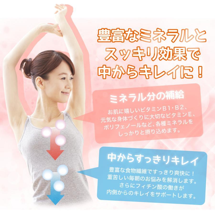 玄米珈琲(玄米コーヒー)プレミアムスティックタイプ 2g×13本入 (鹿児島県産 無農薬 有機JAS認定玄米100%) nishio-cha 12