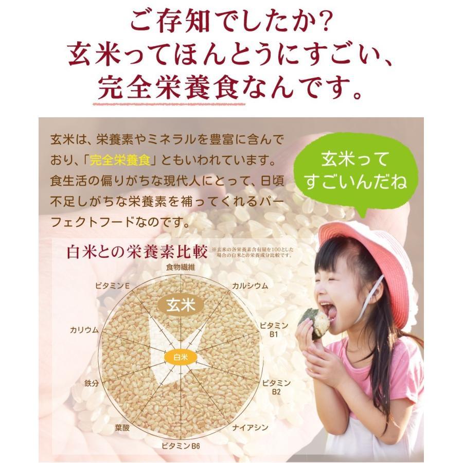 玄米珈琲(玄米コーヒー)ティーバッグタイプ 2袋セット(5g×15包入×2袋) 鹿児島県産 無農薬 有機JAS玄米100% ノンカフェイン|nishio-cha|06